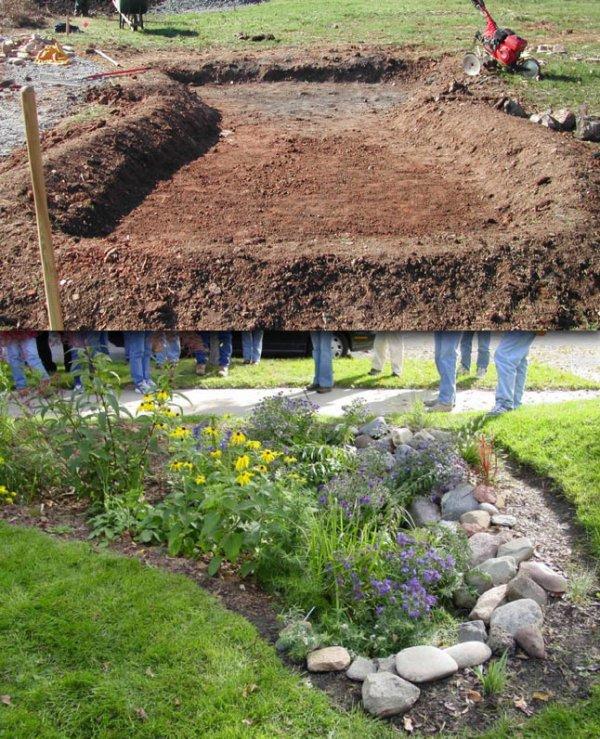 Rain garden before & after