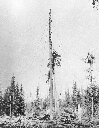 High Lead Logging Spar 2