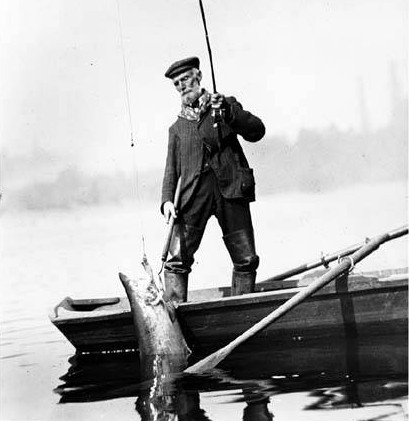 Fisherman landing salmon 1907
