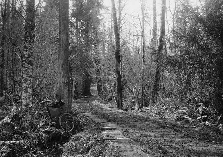 Bicycle beside wagon road sumner to buckley 1896