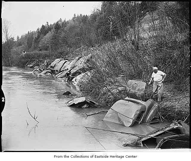 Car bodies on riverbank