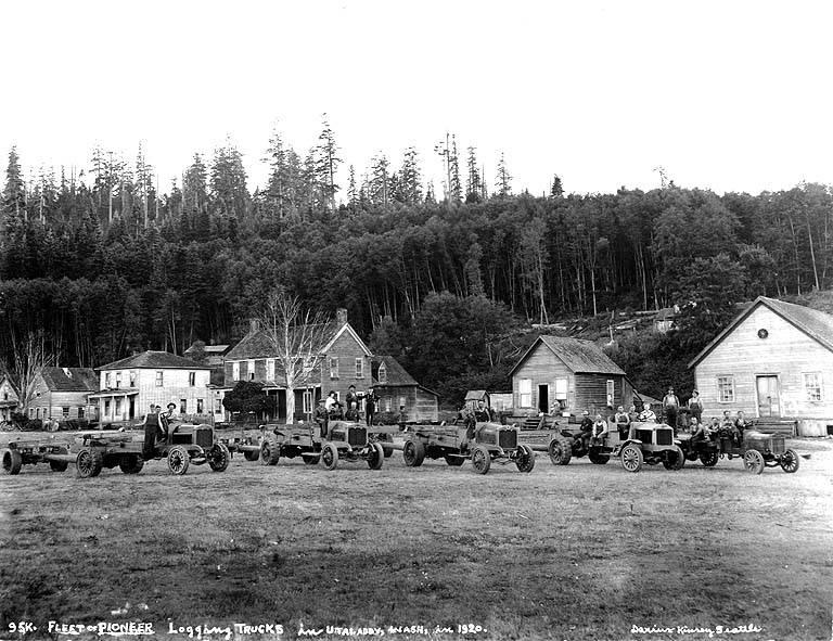 Fleet of logging trucks
