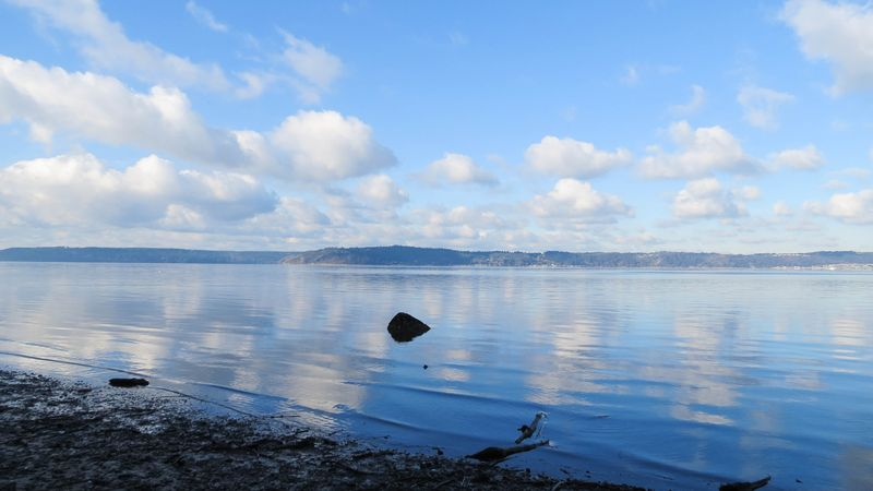 A puget sound view from dumas-2865
