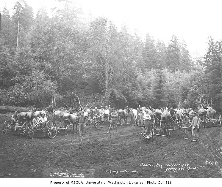 Railroad grading crew 1918