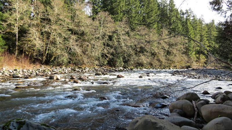 A river 1-1
