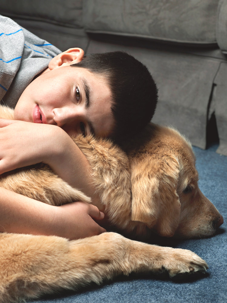 Wonder dog 2