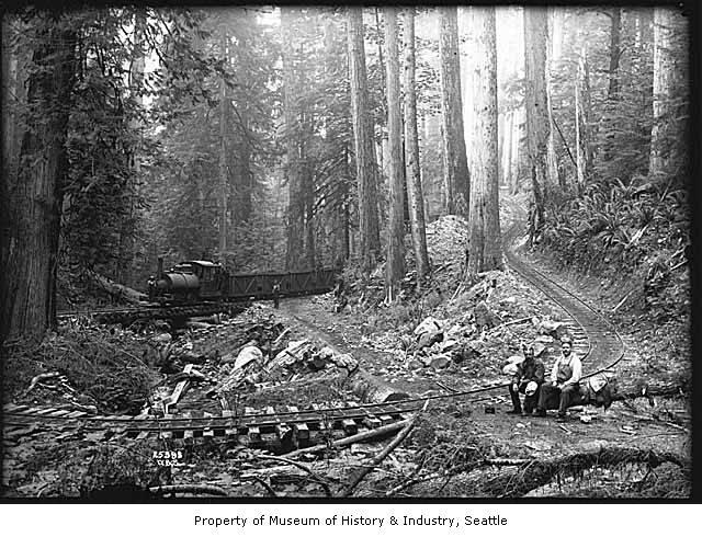 Logging railroad