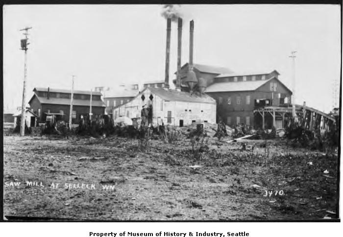 Selleck sawmill 1913