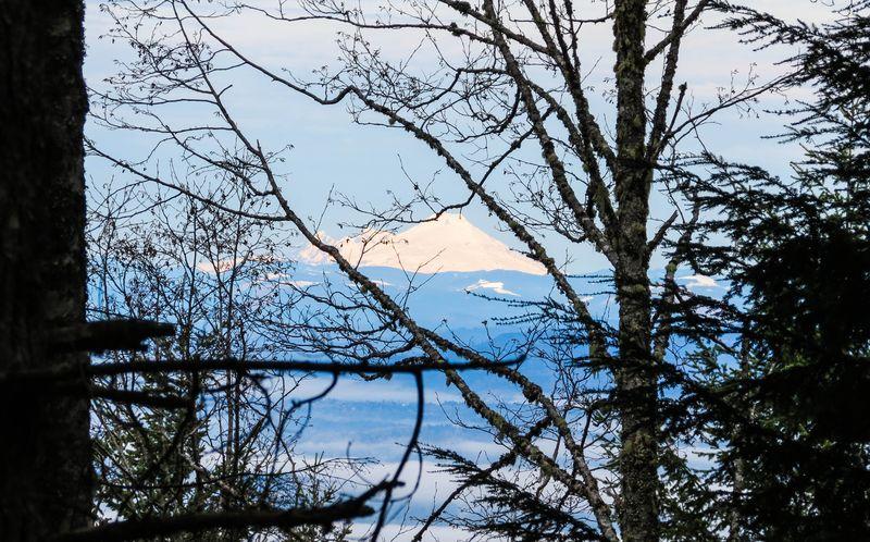 Mount adams-3364