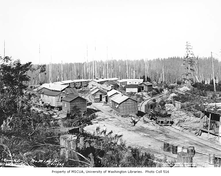 Manley moore logging camp