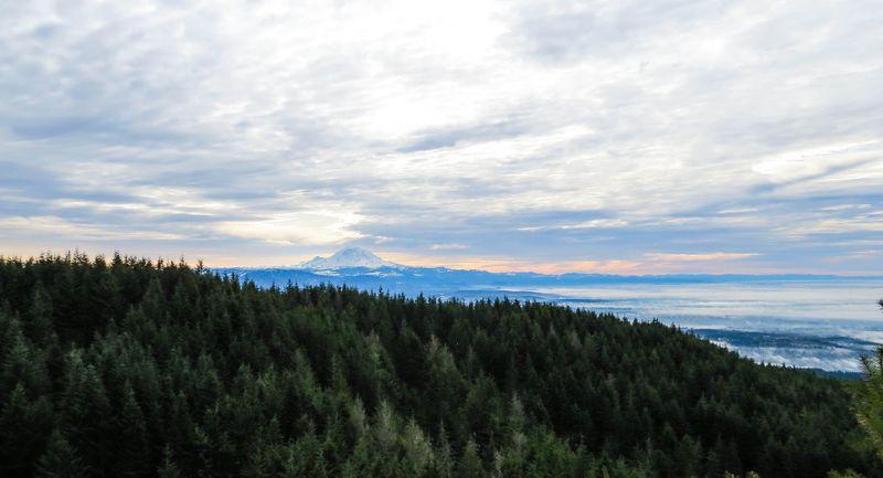 Mount rainier 1-3321