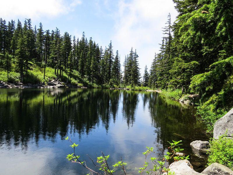 A mason lake 1-1