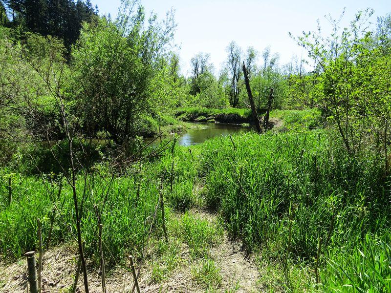 A stream 1-1