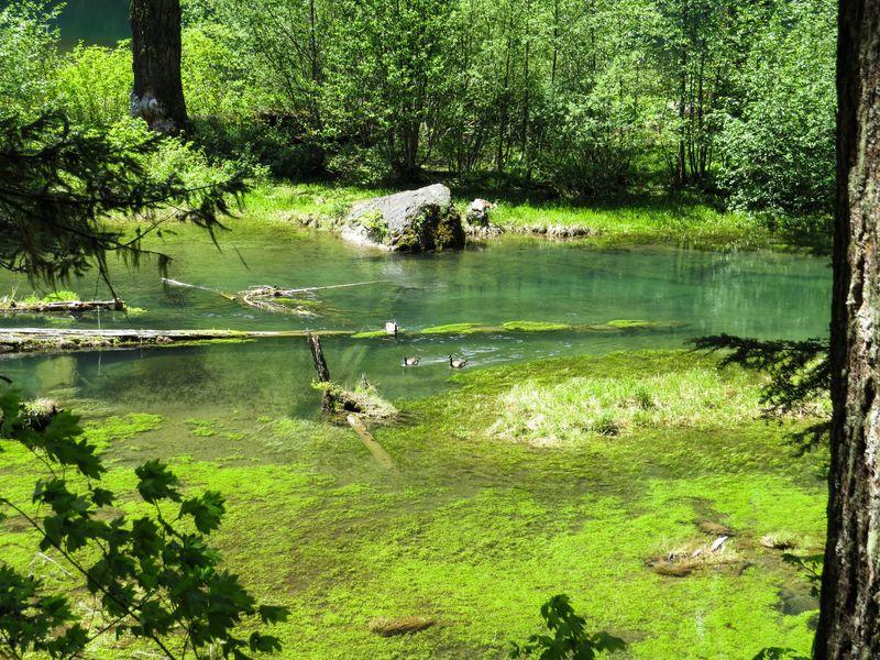 A lakes 1-1