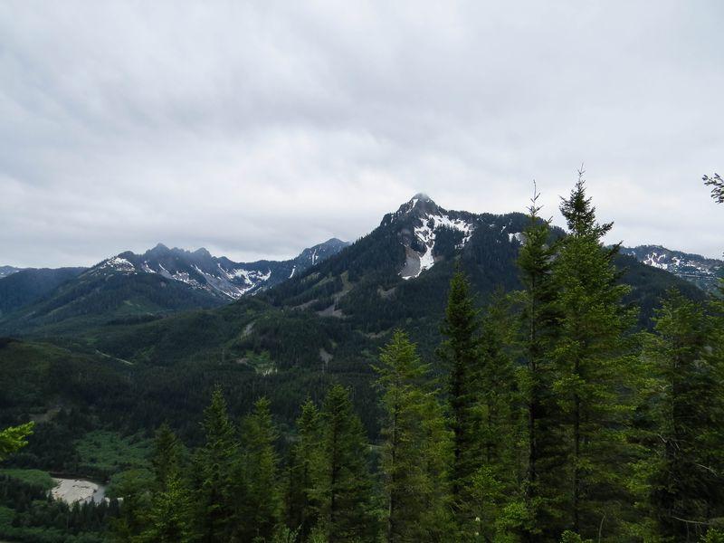 A view 1-1