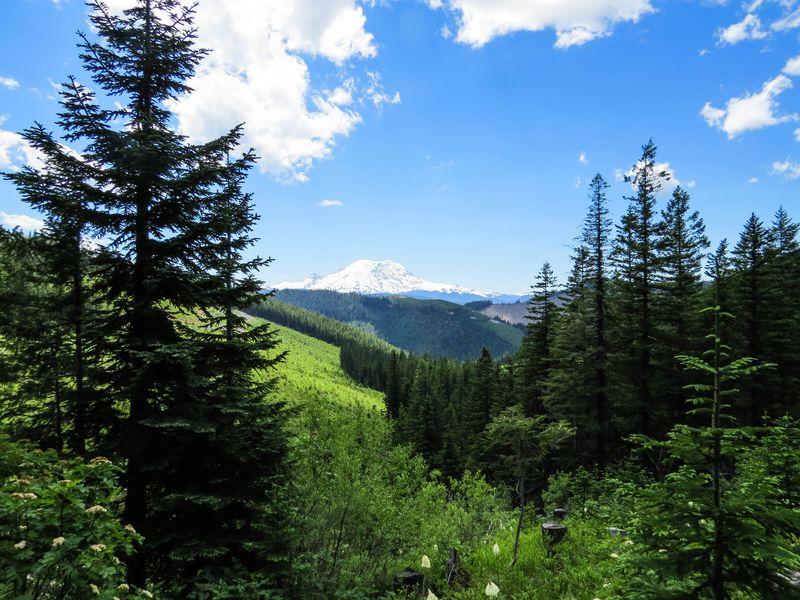 A mount rainier and trail 2-1
