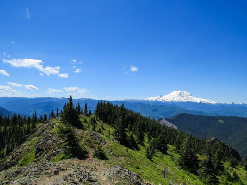 A mount rainier from lookout 2-1