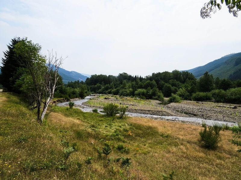 A green river 1-1
