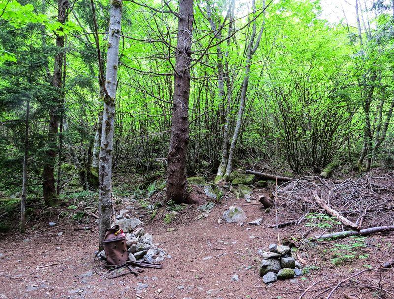 A trail y-1